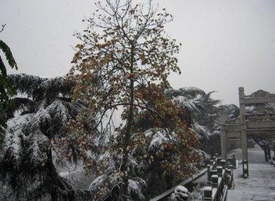 龟山风景区旅游-龟山风景区旅游景点-龟山风景区图片